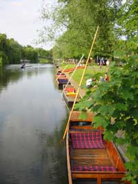 Punts on Jesus Green